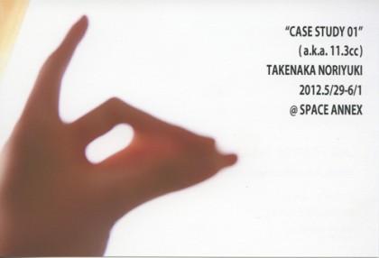 CASE STUDY01 (a.k.a11.3cc) 竹中寛之展